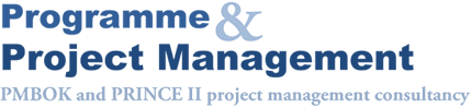 programme and project management services